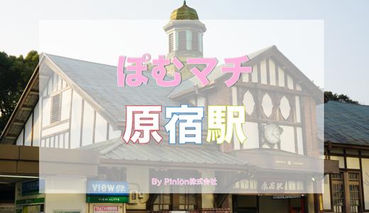 [渋谷区 原宿駅周辺の街情報]ぽむマチ 原宿